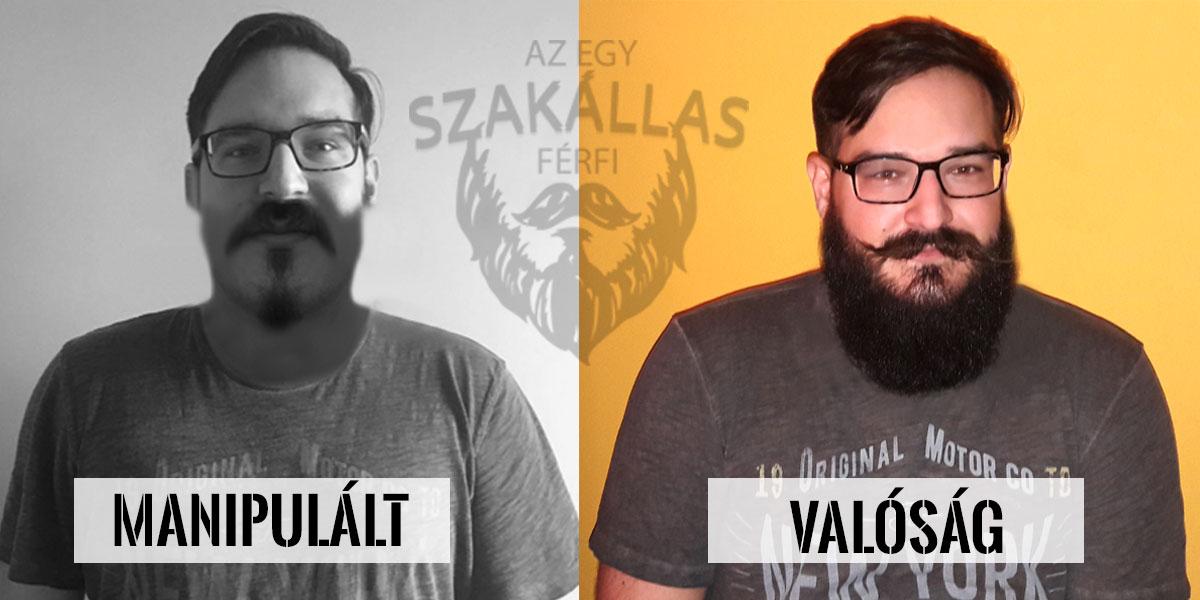 Az Egy szakállas férfi a troll :D